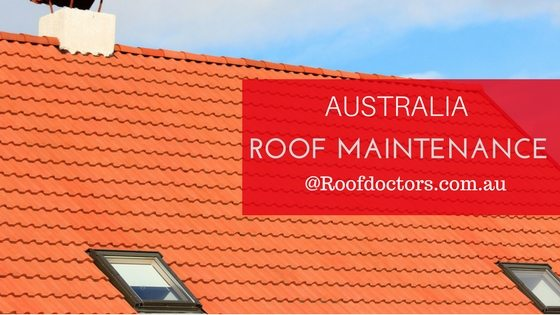 The Summer Essential Roof Maintenance Tips To Be Followed By Everyone